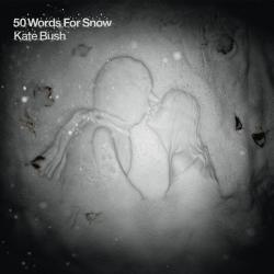 '50 Words For Snow' album cover