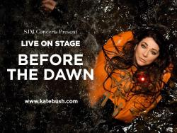 Before The Dawn' Concert poster
