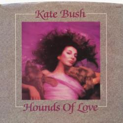 "Hounds Of Love' - USA 7"" single sleeve"