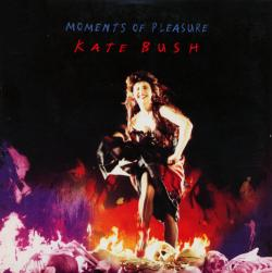 'Moments Of Pleasure' - UK CD-single sleeve