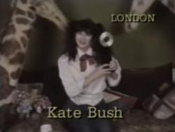 Kate Bush on CMJ New Music Awards, November 1986
